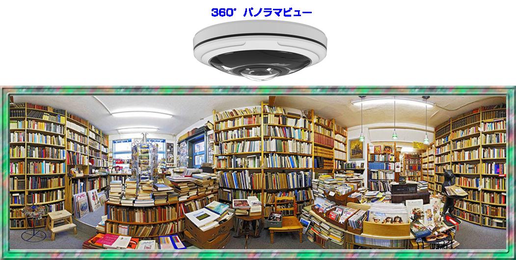 12MP(1200万画素)全方位 360°ネットワークカメラ(RK-1218HE)のパノラマビュー